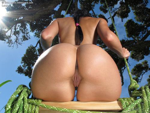 Фото голых больших жоп спортсменок раком крупно 21471 фотография